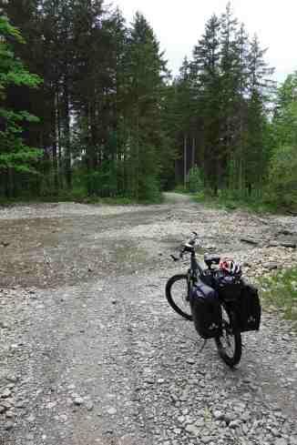 Furt auf dem Waldweg