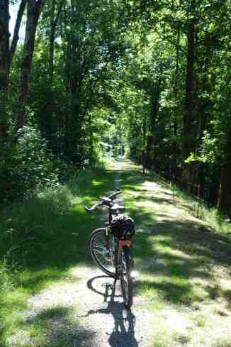 Donau-Wald-Radweg