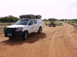 Nebenstraße in der Kalahari